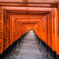 Inari Path di