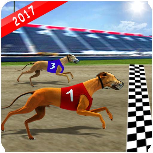 Wild Greyhound Dog Racing
