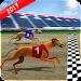 Wild Greyhound Dog Racing icon