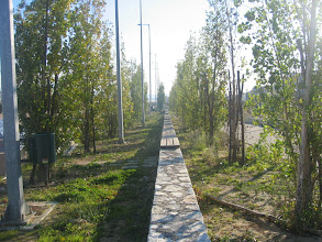 Photo: The Athens Olympic Village - View 20