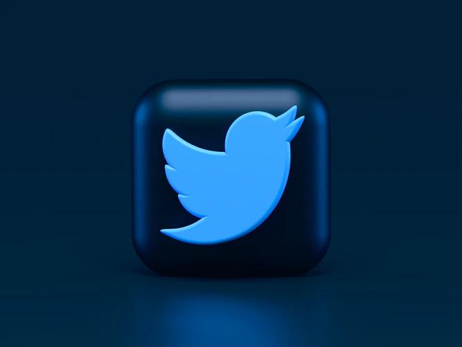 Twitter allows star followers to monetize from their website
