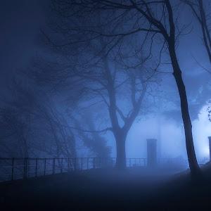 Blue_Fog_03612.jpg