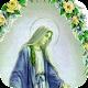 Mi Virgen Maria Gif for PC-Windows 7,8,10 and Mac