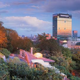 View from Strossmayer square in Zagreb, Croatia by Dražen Škrinjarić - City,  Street & Park  Vistas ( europe, colorful, croatia, zagreb, cityscape, city, lamps, sky, tree, color, autumn, foliage, buildings, view )