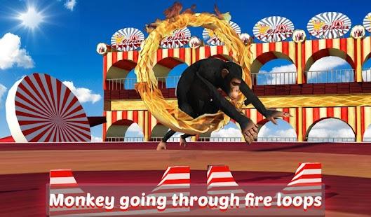 Goat-Monkey-Stunts 14