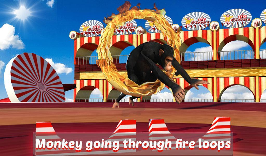 Goat-Monkey-Stunts 32