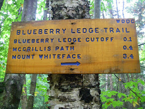 Photo: The Blueberry Ledge Trail is wonderful - steep and rocky with lots of scrambling and great views.