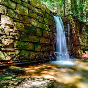 Waterfall in the forest by Dave Bradley - Nature Up Close Water ( nature, outdoor, waterfall, forest, hiking )