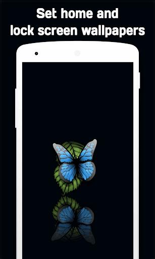 Butterfly Wallpaper 4k Apk Download Apkpure Co