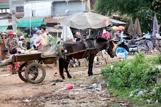 Photo: Year 2 Day 40 - Market in Moung Ruessie