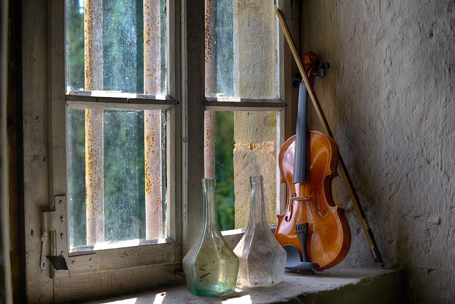 Enjoying The Sunlight At The Window by Marco Bertamé - Artistic Objects Musical Instruments ( violin, glass, sunshine, light, carafe, wood, bottle, window )