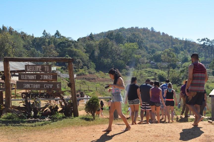 Welcome to Elephant Jungle Sanctuary