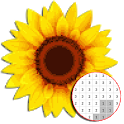 Beautiful Flower Coloring By Number - Pixel Art icon
