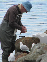 Photo: Year 2 Day 166 - Fisherman in Merimbula