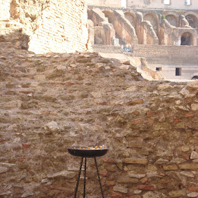 Colosseum - A History is for Live people by Yury Tomashevich - Buildings & Architecture Public & Historical ( history, colosseum, times, architectural detail, architecture, historical, public )