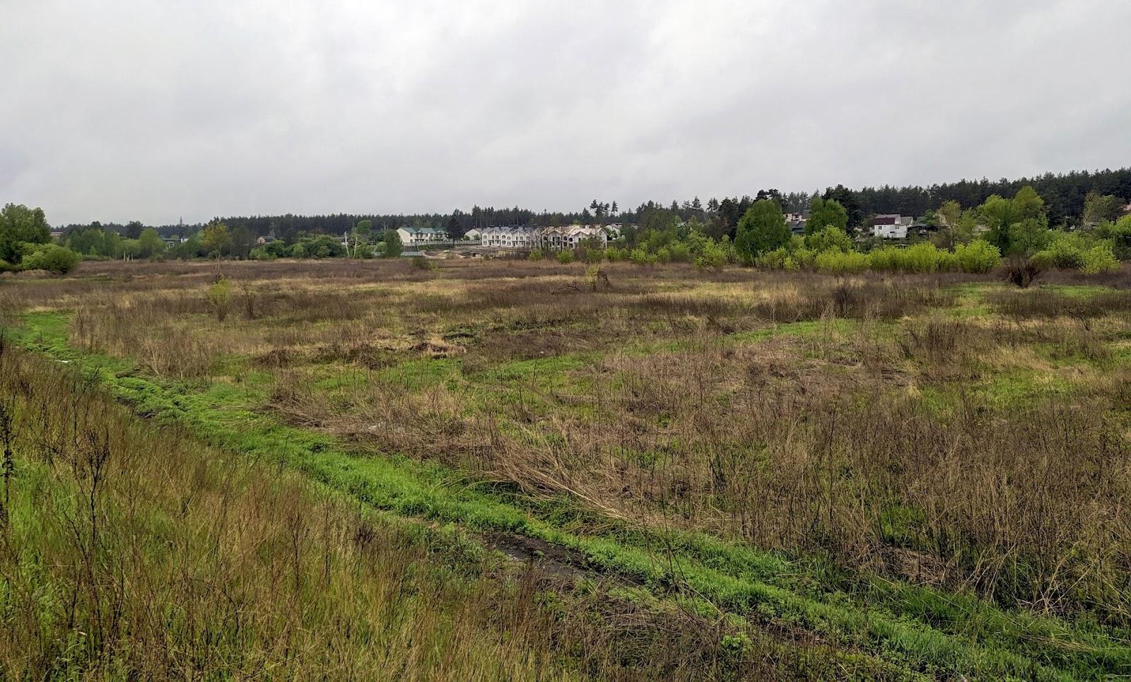 Ділянка з торфовищами, на якій скоро планують звести будинки