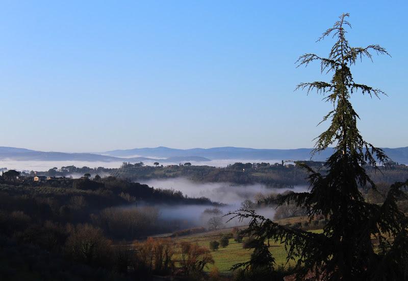 Risveglio nella nebbia di silvia_tamburini