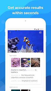 Picture Fish – Fish Identifier 2