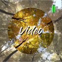 Forest Video Wallpapers icon