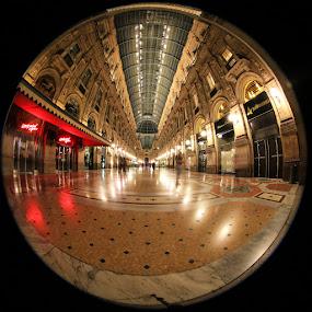 Galleria Vittorio Emanuele by Luca Libralato - Buildings & Architecture Public & Historical ( milan, fisheye, galleria, piazza duomo, duomo, circular fisheye, milano, italy )