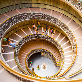 Vatican Museum by Photoxor AU - Buildings & Architecture Architectural Detail ( staircase, spiral, architecture, museum, vatican,  )