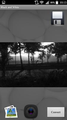 Black White Camera - screenshot