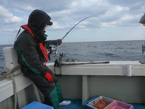 Photo: その後も真鯛は喰いますが・・・早上がりしようとの事! だってアラが釣れたもんで。