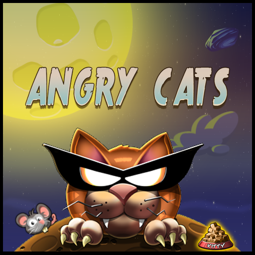angry cats space adventure