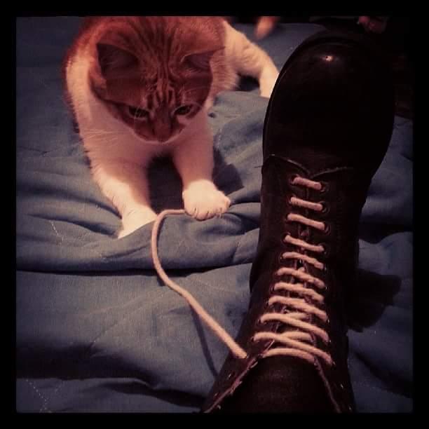 axl e le scarpe di sandrina.oi