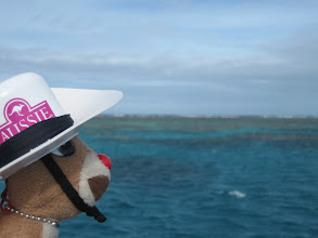 Photo: RRR and the Great Barrier Reef.