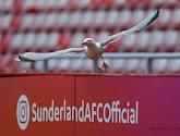 23-jarige telg van familie Louis-Dreyfus wordt eigenaar van Sunderland in League One