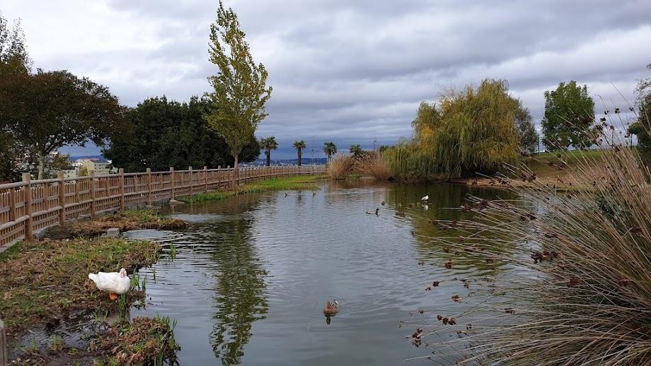 Foto Parque de Eirís 13