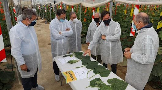 BASF le pone emoción a Fruit Attraction con nuevas propuestas saludables