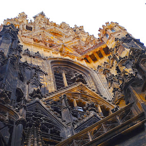 st stephen's cathedral vienna, austria by Ray Anthony Di Greco - Buildings & Architecture Places of Worship ( architecture detail, cities, churches, place of worship, architecture )