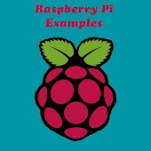 Raspberry Pi Examples