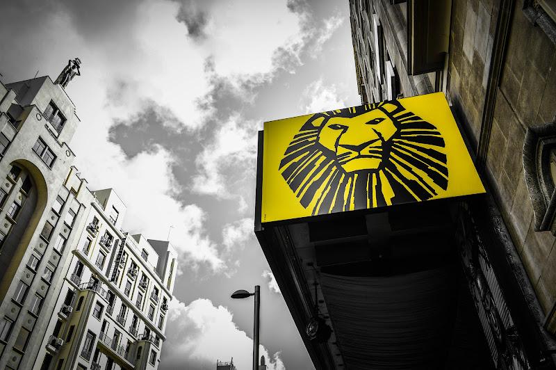El rey león di dago89