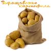 Выращивание картофеля APK