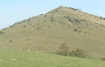 Photo: 14h06 Derrière nous Gastelharri sans doute éminence rocheuse située juste au Nord ( fossé de défense )?