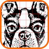Pictures Nonograms/picross