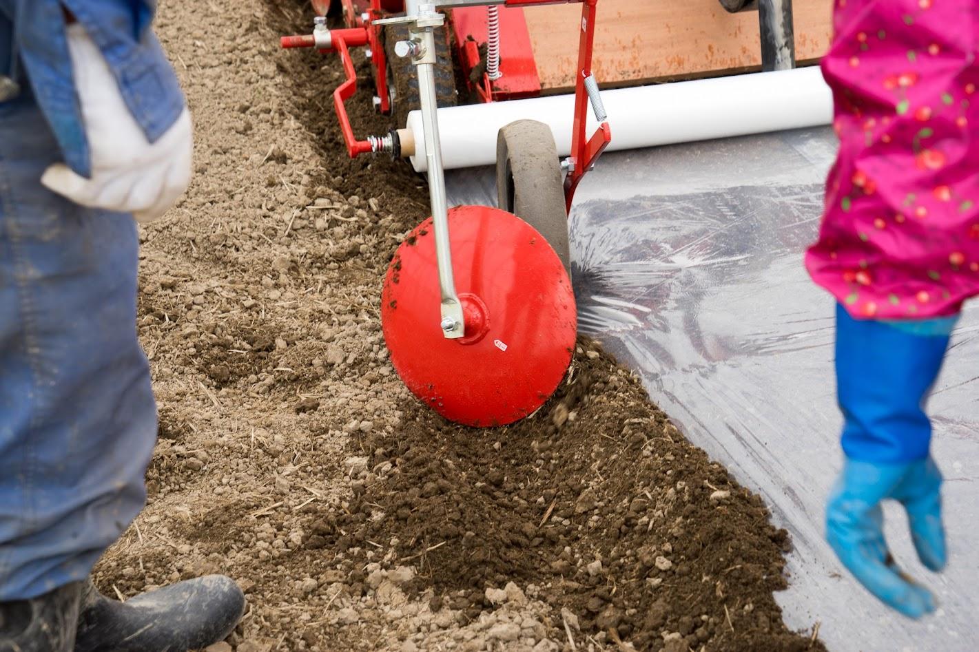 タイヤでマルチを押さえてディスクで土を盛ります