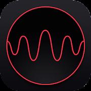 Audio Spectrum Analyzer & Sound Frequency Meter