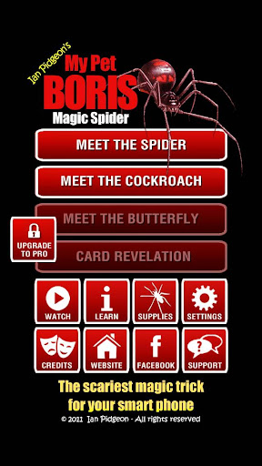 Magic Spider