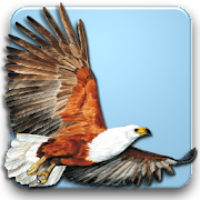 App Icon for Roberts Multimedia Birds of SA App in Czech Republic Play Store