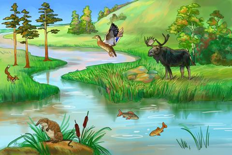 Картинка река для детей детского сада