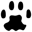 PAW Server for Android icon