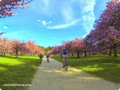 Idées balades à vélo au printemps