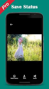 Pro Status download Video Image status downloader APK 4