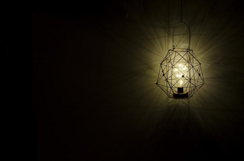 Luce di Primula Vico
