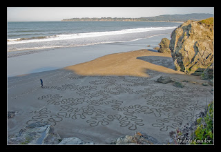 Photo: Cellular Activity', Stinson Beach, CA. This is a fractal pattern. The undulating line is creating undulations in the overall design at 3 levels (there are 2 fine lines acting as the backbones for the previous 2 levels. Its similar to the folds of the brain, coral, or intenstines.