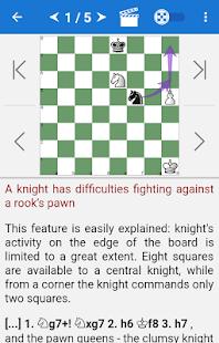 Chess Endings for Beginners - náhled